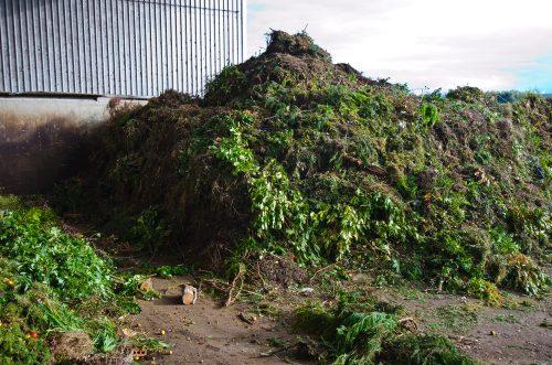 déchets verts praxy